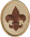 BoyScoutPatch